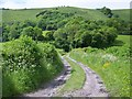 SU8318 : Bridleway to Didling Hill by Maigheach-gheal