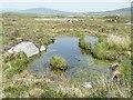 NF8373 : Boggy Pool by Anne Burgess