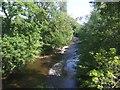 SJ1800 : River Rhiw downstream of Berriew Aqueduct by John M