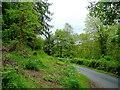 SO4914 : Brookholm Wood by Jonathan Billinger