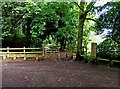 SO8577 : Start of main footpath in Hurcott Wood at car park by P L Chadwick