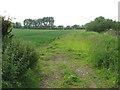 TG3303 : Field adjoining bridleway by Evelyn Simak