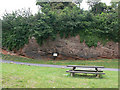 SJ4154 : Dee Cliffs, Farndon by Alan Murray-Rust