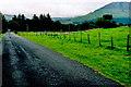 G7253 : Road to Gleniff Horseshoe Drive & Benwiskin by Joseph Mischyshyn