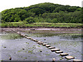 SN0406 : Stepping stones over Cresswell River by John Duckfield