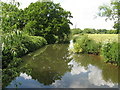 TQ0627 : Westerly view of the River Arun near Loves Bridge by Dave Spicer