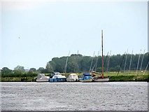 TG3504 : Boats moored on the River Yare by Evelyn Simak