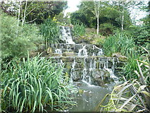 TQ2882 : Waterfall in Queen Mary's Gardens, Regent's Park by pam fray