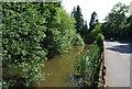 TQ6350 : Roadside pond, Maidstone Rd, Hadlow (2) by N Chadwick