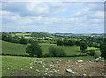 ST6165 : 2009 : Sheep pasture near New Barn Farm by Maurice Pullin