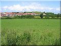 SD4663 : Torrisholme Barrow from Barley Cop Lane by Ian Taylor