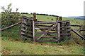 NU1306 : Gate north of Glantlees by Andy F