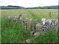 SK2275 : Footpath towards Stoney Middleton by Chris Wimbush