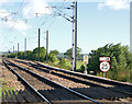 NU2309 : Railway speed sign at Wooden Gate by Andy F