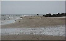 NT4884 : Black Rocks, Gullane by Richard Webb