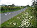 SD4864 : Kellet Lane by Ian Taylor