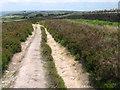 SE0436 : Footpath on Brow Moor by Chris Wimbush
