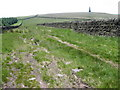 SD9824 : Dick's Lane footpath towards Stoodley Pike by Chris Wimbush