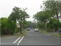 SE1421 : Armitage Avenue - viewed from Archbell Avenue by Betty Longbottom