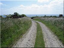 TA0114 : The Footpath towards Worlaby by David Wright