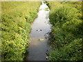 SD3106 : Downholland Brook by Alexander P Kapp
