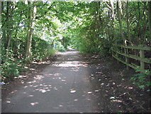 SJ7993 : Hawthorn Road by david newton
