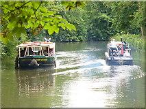SU9948 : Pleasure Boats on the Wey by Colin Smith