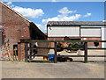 TM1896 : Hapton Hall - the Mrs Coco Markus Veterinary Hospital by Evelyn Simak