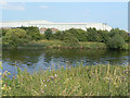 SK6239 : River Trent near Holme Pierrepont by Alan Murray-Rust