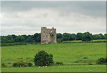 N5544 : Rattin Castle near Kinnegad, Co. Westmeath by Dylan Moore