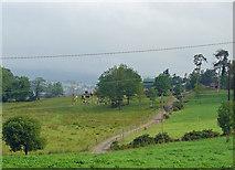 R6867 : Farm near Birdhill, Co. Tipperary by Dylan Moore