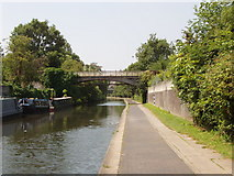 TQ2883 : Zoo bridge over Regent's Canal by David Hawgood