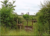 N5541 : Gate: Baltinoran, Co. Meath by Dylan Moore