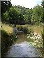 SX0048 : Footbridge by Nansladron (2) by Derek Harper