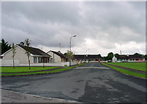 N4944 : Housing at Miltownpass, Co. Westmeath by Dylan Moore
