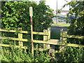 SD9752 : Overgrown stile by Stephen Craven