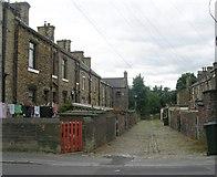 SE1527 : Back Mayfield Place - Mayfield Avenue by Betty Longbottom