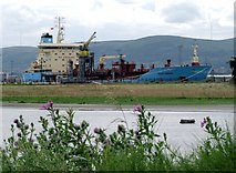 J3677 : The 'Nuuk Maersk' at Belfast by Rossographer