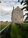 V8493 : Castles of Munster: Ballymalis, Kerry (1) by Mike Searle