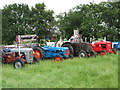 SJ8169 : Lower Withington Rose Day - tractors in waiting by Paul Kennington