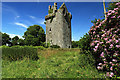 R4601 : Castles of Munster: Lohort, Cork (1) by Mike Searle