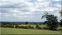 TQ1352 : View Near Polesden Lacey by Peter Trimming