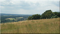 TQ1450 : View From Ranmore Common, Surrey (3) by Peter Trimming
