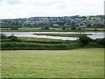 SY2591 : Axmouth Marshes by Maigheach-gheal
