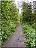 SO9596 : Peascroft Lane Path by Gordon Griffiths