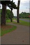 NZ5820 : Cycle Track Alongside the A174 by Mick Garratt