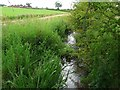 NY4856 : The Trout Beck near Corby Hill by Rose and Trev Clough
