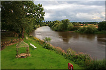 SJ5409 : The River Severn by David Lally