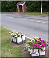 TM3963 : Bus Shelter on the B1119 Church Hill, Saxmundham by Adrian Cable