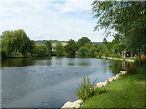 TQ1649 : Millpond, Dorking, Surrey by Peter Trimming